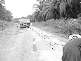 Evocrete - Renovation of an agricultural road in Jalan Pekoti Timur